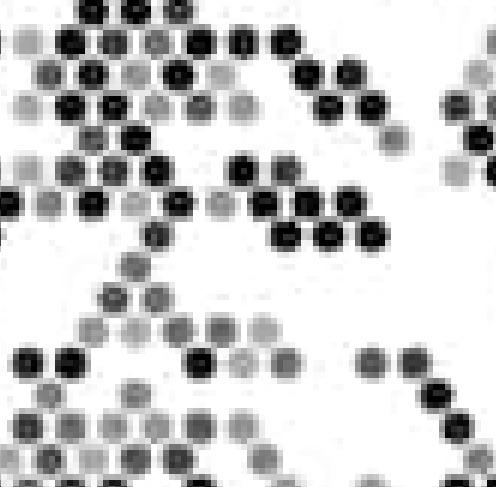 Tiger individual dots